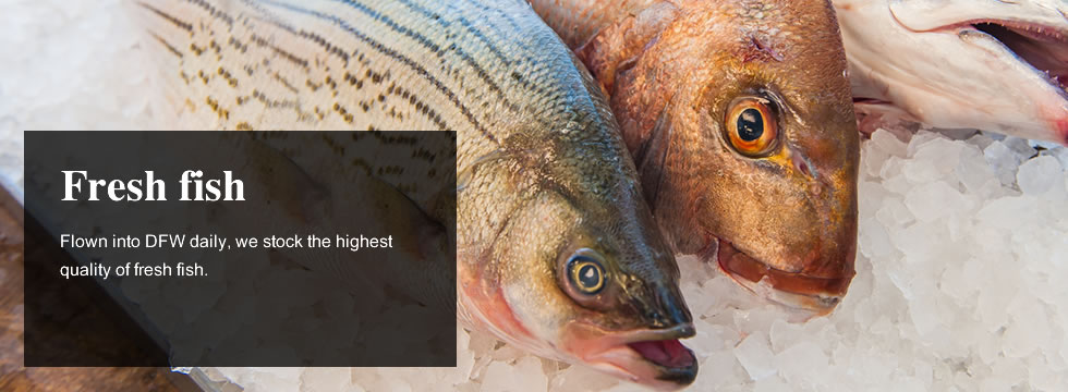 Homepage kazy 39 s gourmet for Daily fresh fish